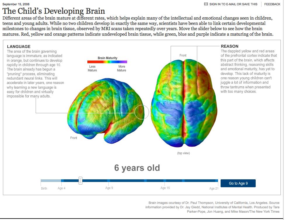 Brain-age-6-picture