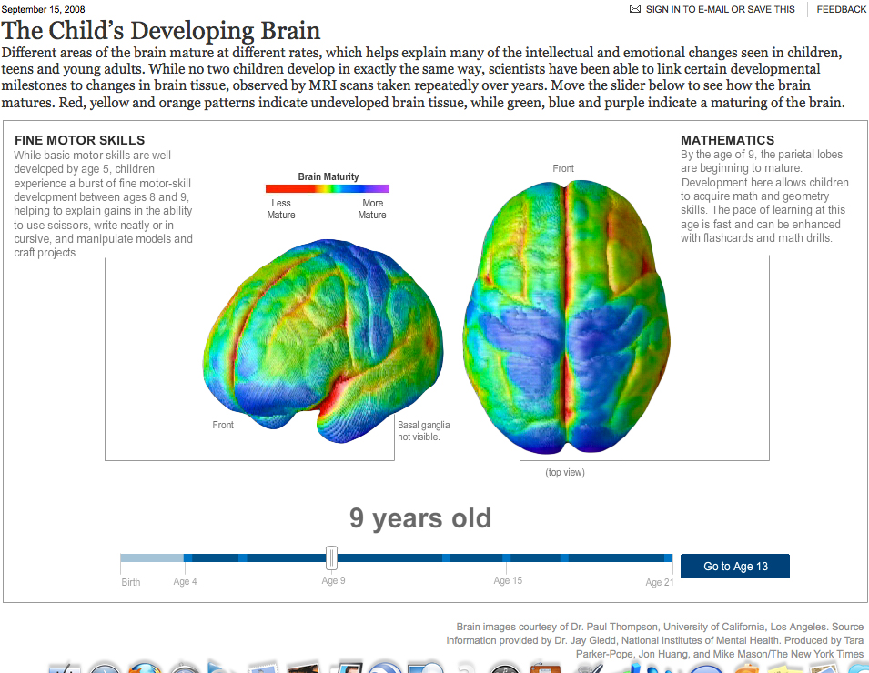 Age of brain maturity